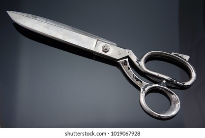 professional Tailor's scissors isolated