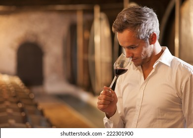Professional winemaker smelling a glass of red wine in his traditional cellar surrounded by wooden barrels