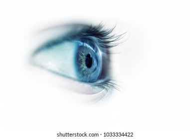 profile of a blue eye close-up on a white background