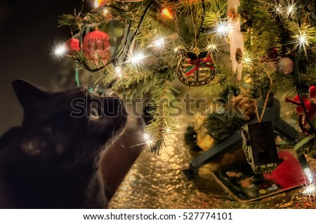 profile of cute black cat looking at christmas tree lights and decorations