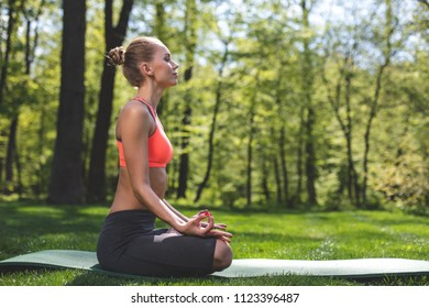 Profile of fit woman meditating in green park. Female is sitting on mat in lotus pose. She is enjoying mental calmness in solitude among peaceful environment