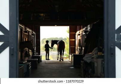 Profile of Horseback Riding Girl Leading Horse from Barn to Pasture in Silhouette