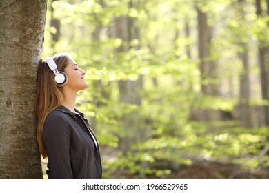 Profile of a relaxed woman resting listening to music with headphones in a forest