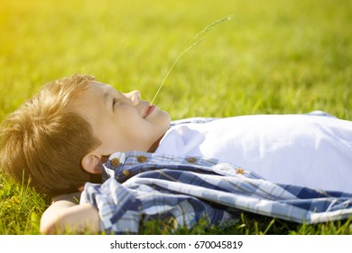 Profile shot of a cheerful young boy lying on the grass at the park on a sunny summer day smiling happily with a straw in his mouth copyspace vitality happiness lifestyle children childhood relaxing