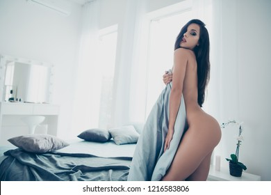 Profile side view photo of stunning, adorable alluring magnificent lady with long straight hair without underwear look at camera cover body with blanket stand in cozy comfort modern interior