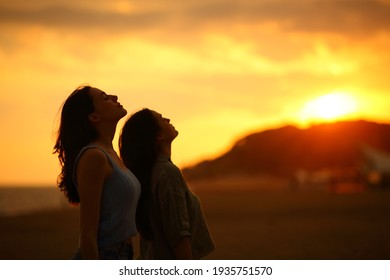 Profile of two women silhouette breathing fresh air at sunset on the beach
