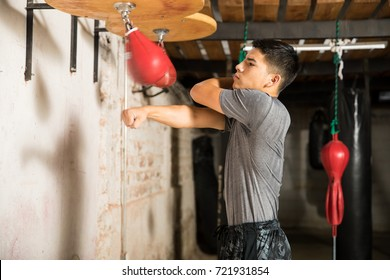 Profile view of an athletic man training with a speed bag in a boxing gym