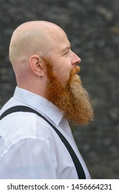Profile view of a bearded redheaded man with shaved head wearing earring and braces over a grey background