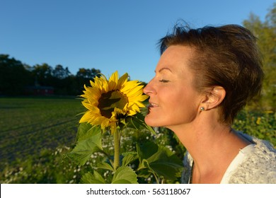 Profile view of mature happy Caucasian woman smelling sunflower on sunny day