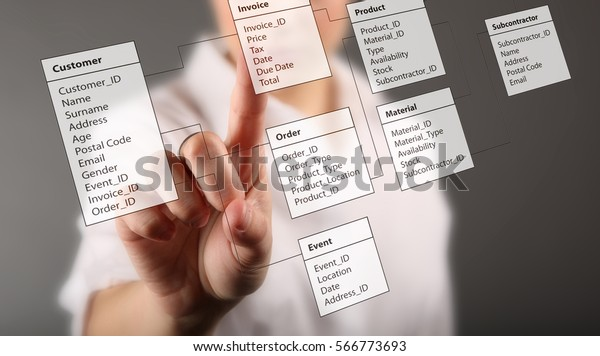 Programmer-woman designs a new database tables