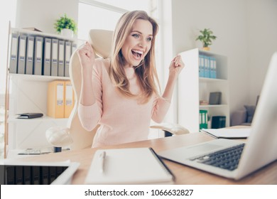 Progress effort benefit attainment advance prosperity people person breakthrough joy concept. Portrait of cheerful joyful excited lovely financier stockholder celebrating success in front of netbook