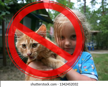 Prohibition sign on the background of redhead cat and a little girl. The concept of danger from domestic and stray animals.