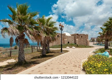 Promenade along Mediterranean sea decorated with palms and flowers as ancient tomb of unknown shah on background in Ashkelon, Israel.