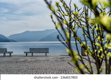 Promenade of Ascona in the spring time
