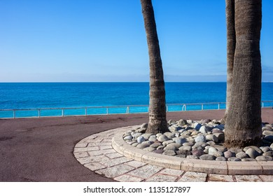 Promenade des Anglais with palm trees at Mediterranean Sea on French Riviera in city of Nice, France, summer vacation scenery.