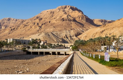 a promenade at the ein bokek resort town on the dead sea showing the flood channel of wadi bokek with the judean desert mountains