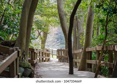 Promenade of Kakitagawa Park