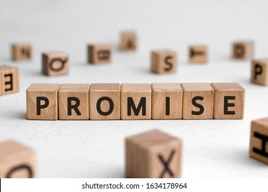 Promise - words from wooden blocks with letters, assurance swear promise concept, white background