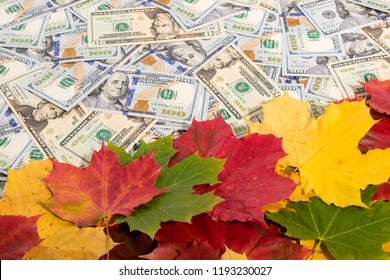 Promotion sale concept background with dollars money and colorful autumn maple leaves