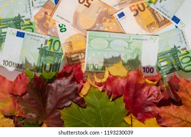 Promotion sale concept background with euro money and colorful autumn maple leaves