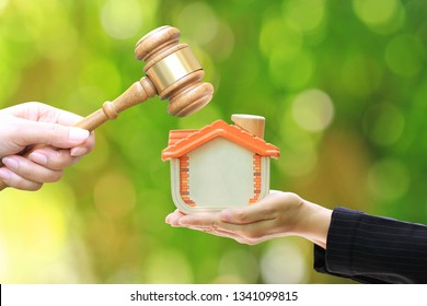Property auction, Woman hand holding gavel wooden and model house on natural green background, lawyer of home real estate and ownership property concept