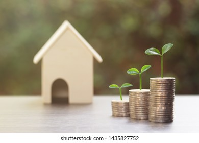 Property investment, home loan, reverse mortgage, Business and financial, Saving money concept. Plant growth on stack of coins with a small house model on wood table.