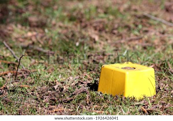 property-line-marker-grass-600w-19264260