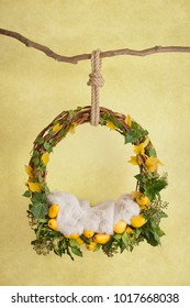 props for photographing newborns, a hanging ring on a branch with pears and leaves on a yellow background