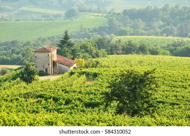 """Prosecco Hills - """"prosecco hills between Conegliano and Valdobbiadene in italy"""""""