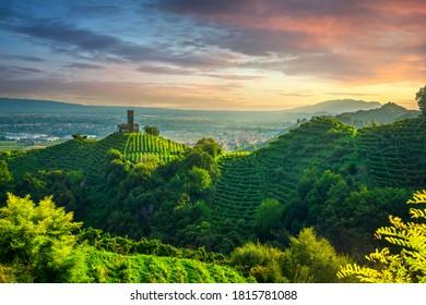 Prosecco Hills, vineyards and San Lorenzo church at sunset. Unesco Site. Farra di Soligo. Veneto, Italy, Europe.