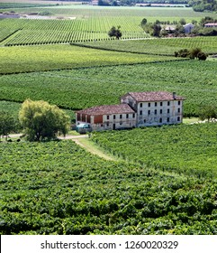 Prosecco wine valley of Valdobbiadene Treviso, with vineyards and farms