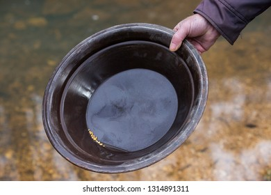 Prospector+gold+panning Images, Stock Photos & Vectors