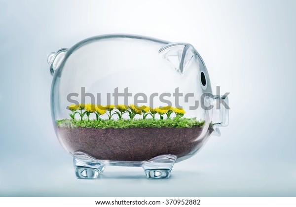 Prosperity concept with grass and flowers growing inside transparent piggy bank