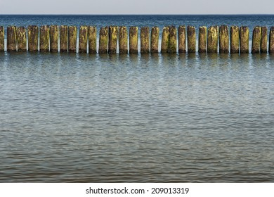 to protect the beach - wooden piles on the shore