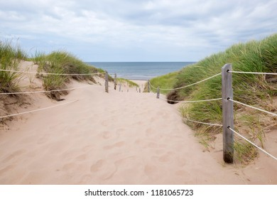 Protected Sand Dunes By the Sea in Prince Edward Island's Greenwich Area