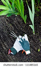 Protecting gloves with small garden rake on soil