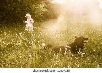 Protection: faithful dog patrolling while cute little girl strolling on the meadow