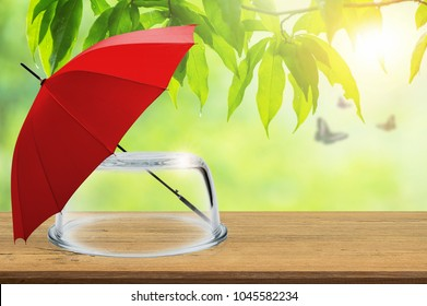 Protection insurance, Empty transparent glass dome and red umbrella on wooden floor with blurred natural background, Blank space for product display and presentation, Concept of insurance.