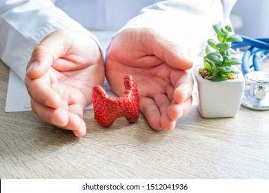 Protection, treatment, prevention and patronage health in endocrinology of thyroid gland against diseases, pathologies concept photo. Doctor surrounded thyroid gland shape with hands on desk