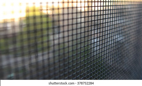 Protective mesh on the window against insects.