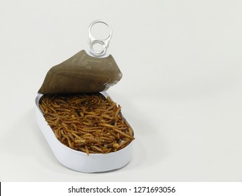 protein source mealworms