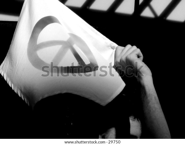 A protestor in Union Square (United for Peace and Justice Protest), NYC
