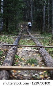 The prototype of the railway made of logs and boards in the forest. Logs and boards lie like rails and railway sleepers