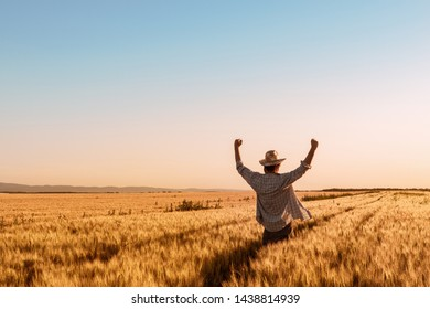 Proud happy victorious wheat farmer with hands raised in V shape celebrating success and abundant yield of ripe cereal crops ready for harvest