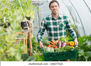 Proud man presenting vegetables in a basket standing greenhouse