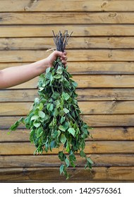 provision birch broom for bath. Traditional northern spa attribute. brooms for traditional Russian and Finnish saunas. hand holding  fresh birch broom against wooden wall. copy space