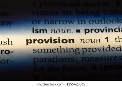 provision word in a dictionary. provision concept.