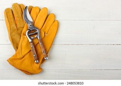 Pruner on garden gloves