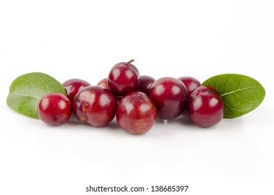 Prunes( Prunus domestica)