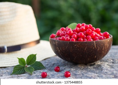 Prunus tomentosa or nanking cherry harvest in a cocnut bowl on a stone outdoors in summer. Countryside vacation concept